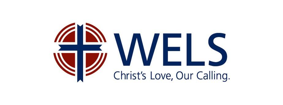 wels logo